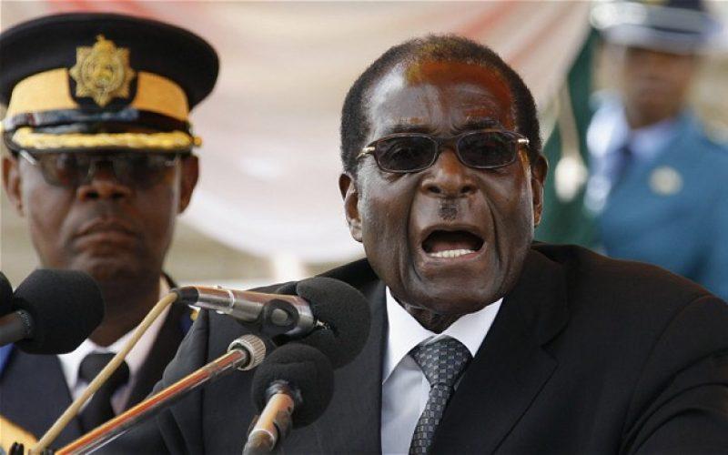 Zimbabwe: Apostolic Churches Confirm Loyality to President Mugabe