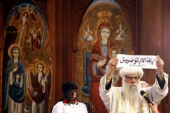 Egypt: Chief Perpetrator In Cathedral Incidents Arrested – Security Source