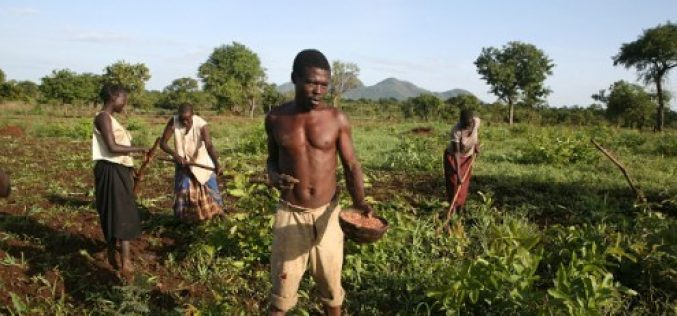 Mozambique: World Bank Loans for Agriculture