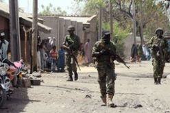 Nigerian army 'destroys' Boko Haram camps in north-east