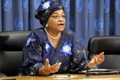 Liberia: Sirleaf Renews Commitment to Upholding Religious Freedom, Joins Muslims for Prayers