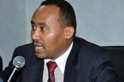 Ethiopia: Minister – Govt Works to Uphold Religious Tolerance