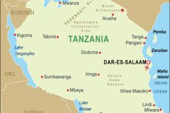 Tanzania Muslim Council condemns cathedral attack
