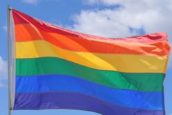 Gay minister to fight unfair dismissal