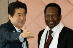 Japan's Shinzo Abe hails Africa as 'growth centre'