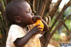 Nutrition 'must be a global priority', say researchers