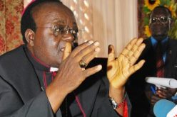 Uganda: Pope Meets Archbishop Lwanga
