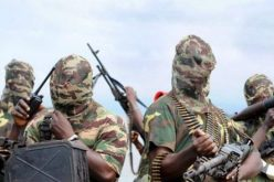 Nigeria: Boko Haram Kills Pastor, Destroys Four Churches