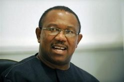 Nigeria: Gov. Obi Wades Into Catholic Church, Traditionalists Rift in Anambra