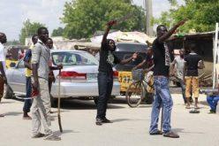 Nigerian Boko Haram and vigilantes 'in deadly clashes'