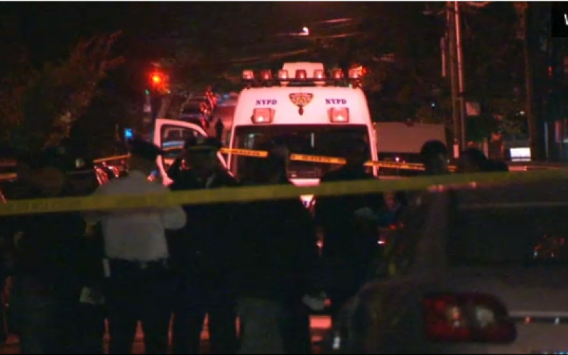 Mother and 4 Children Slaughtered in Horrific Stabbing at Brooklyn House; Crazed Cousin Held as Suspect