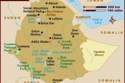 """Ethiopia: """"Ethiopians Should Avoid Religious Politics"""", Hailemariam"""