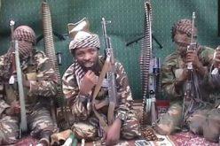 US names Nigeria's Boko Haram and Ansaru 'terrorists'