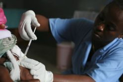 Antibiotics Overuse is Price of Success in Africa Malaria Fight
