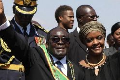 Call for Zimbabwe's Grace Mugabe to return PhD