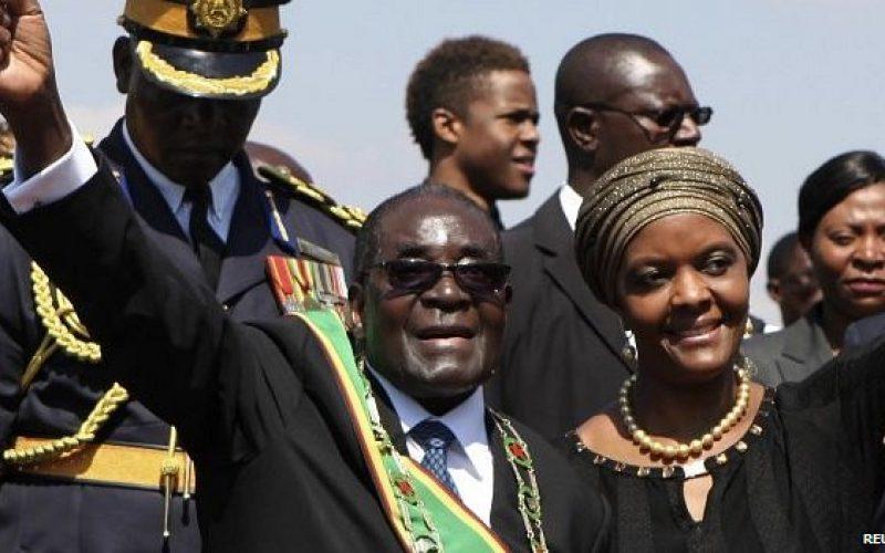 Call for Zimbabwe's Grace Mugabe to return PhD