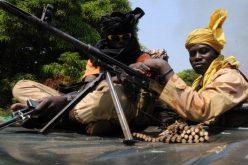 LRA's Dominic Ongwen 'capture': Seleka rebels want $5m reward