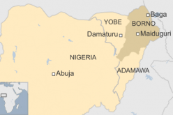 Nigeria: 'Girl bomber' kills 19 people in Maiduguri market