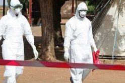Ebola crisis: Mali says it has no more cases