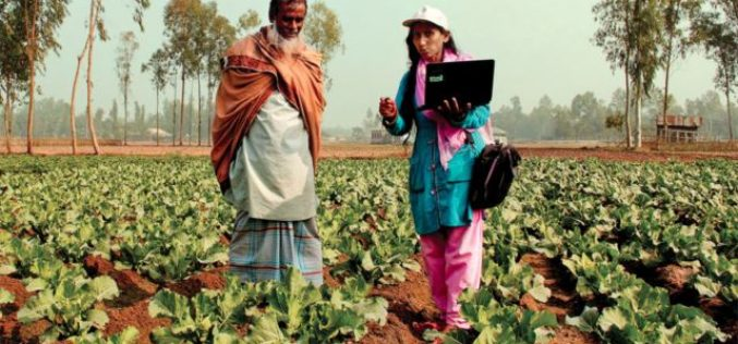 Conflict, Climate Affect Food Security