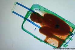 Ivory Coast boy smuggled to Spain inside suitcase