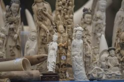 Tanzania Urges China to Curb Ivory Demand