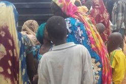Cameroon begins 'repatriating 12,000 Nigerians'