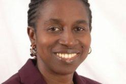 Ghana: 40-yr dev't plan will help parties – Dr Bediako