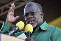Tanzania's President Signs New Mining Bills into Law