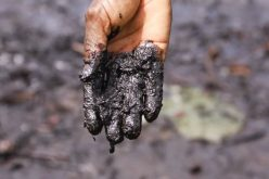 Nigeria: Shell's Oil Spill Dispute With Nigerian Villagers Back in UK Court