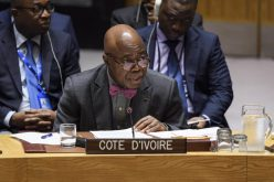 Security Council mourns death of Cote d'Ivoire ambassador